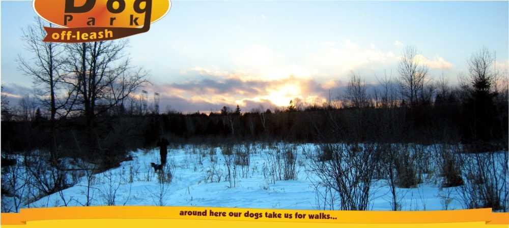 Dog Park Finder Ottawa